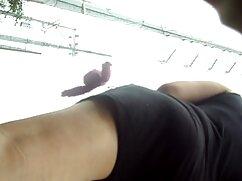 美しい母はL.A.娘を舐める 無料 女性 専用 エロ 動画